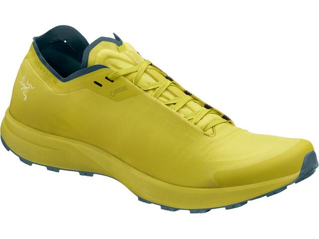 Arc'teryx Norvan SL GTX Shoes Men Lampyres/Neptune